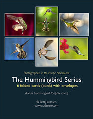 Hummingbird Series boxed cards