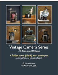 Camera Series boxed cards