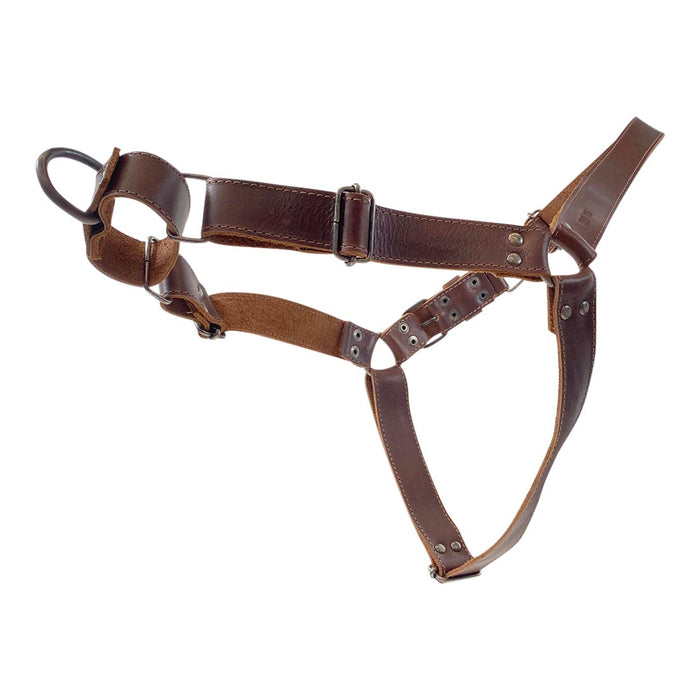 Easy Walk Leather Dog Harness