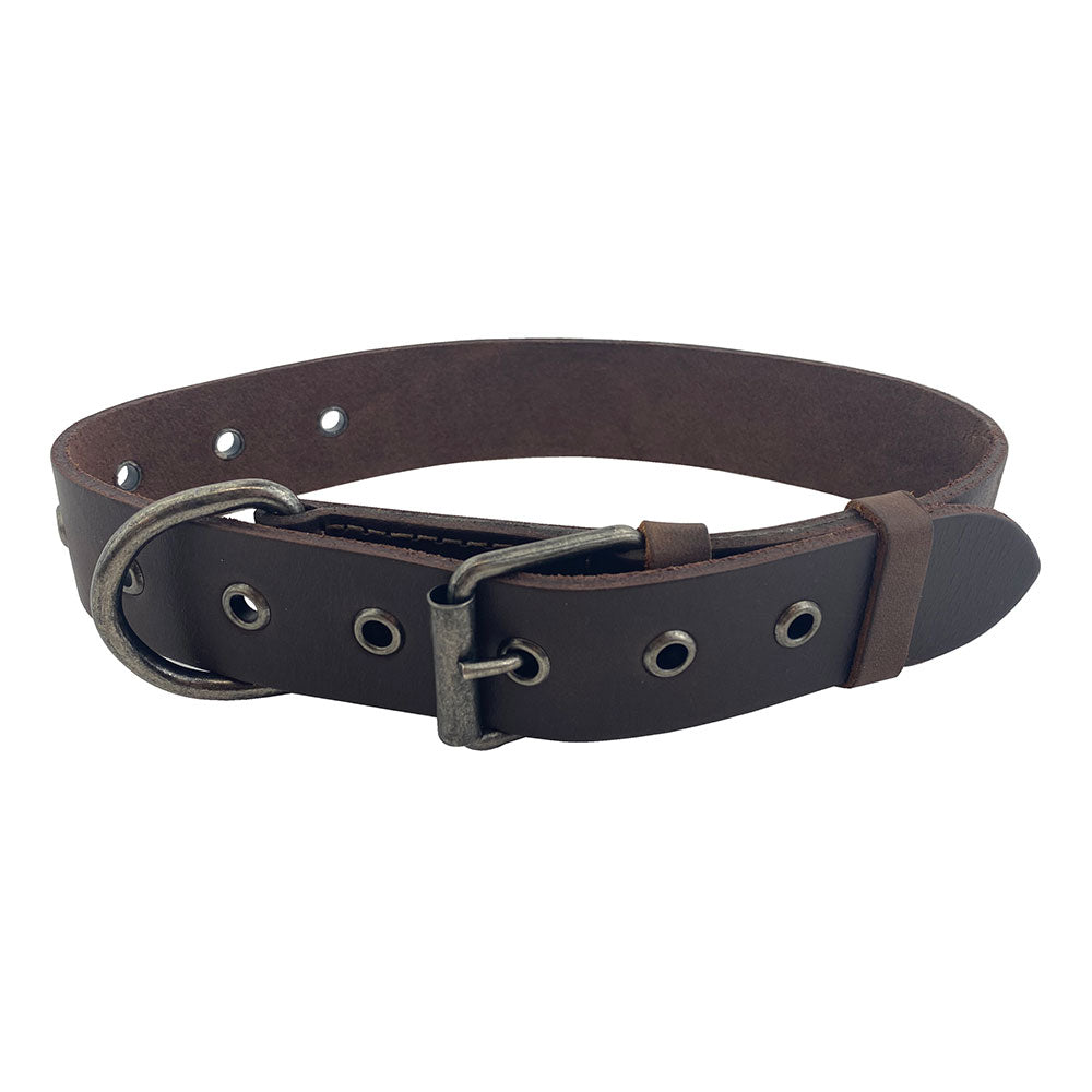 Thick Leather Dog Collar for Medium Size Dog (12 to 21 Inches)