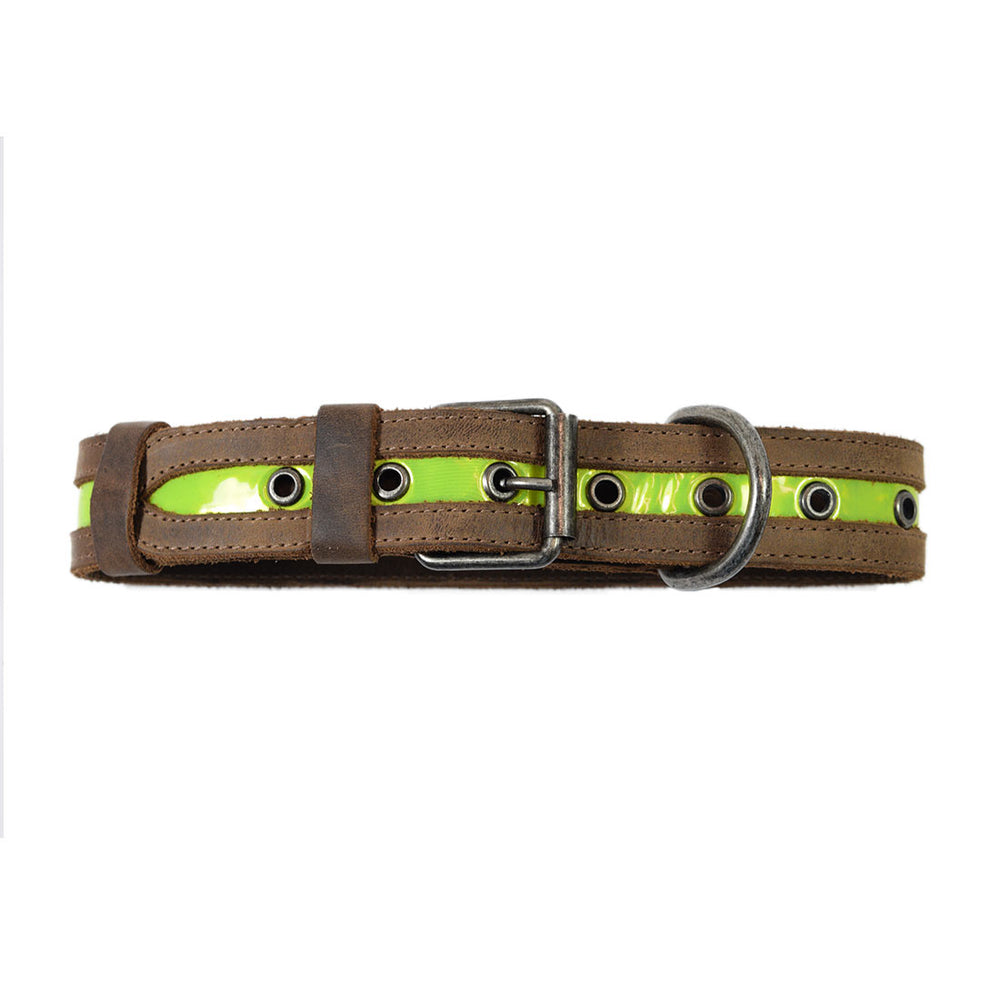 Dog Collar Reflective  (12 to 21 inches)
