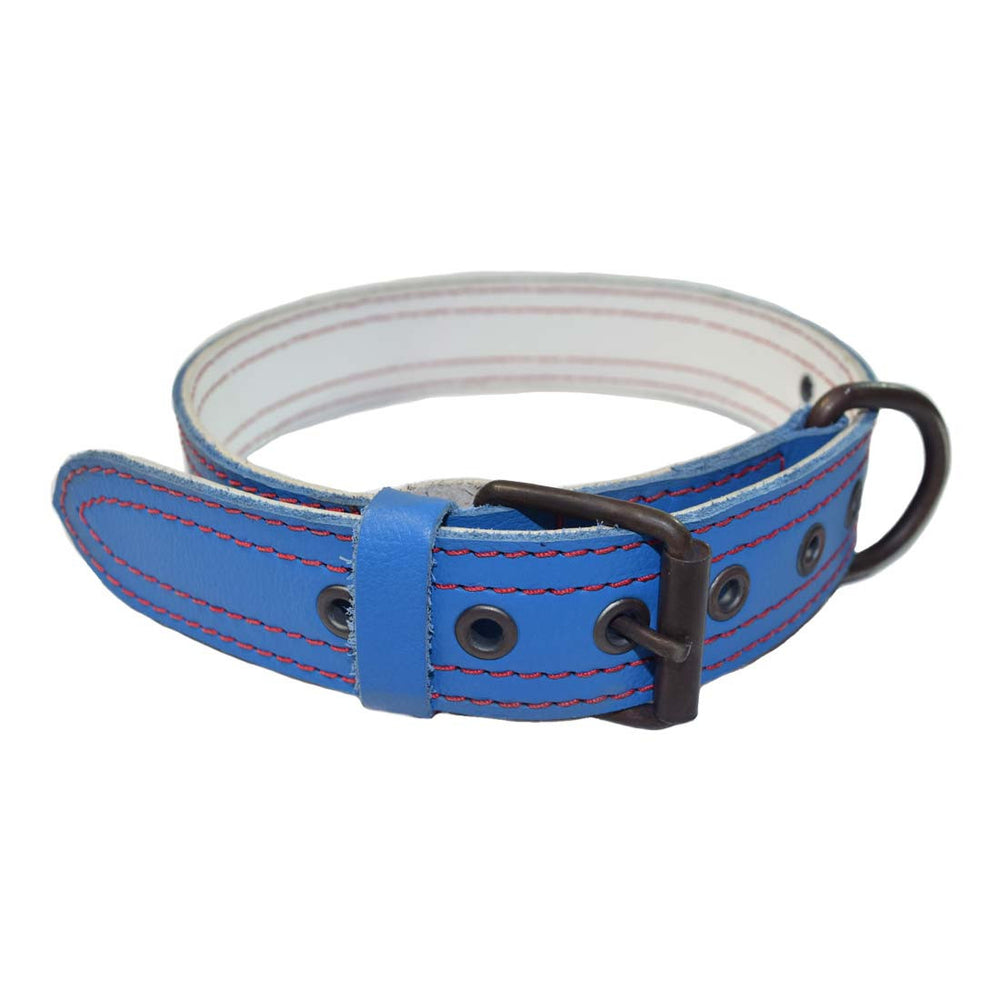 Chicago Style Cubbies Leather Dog Collar