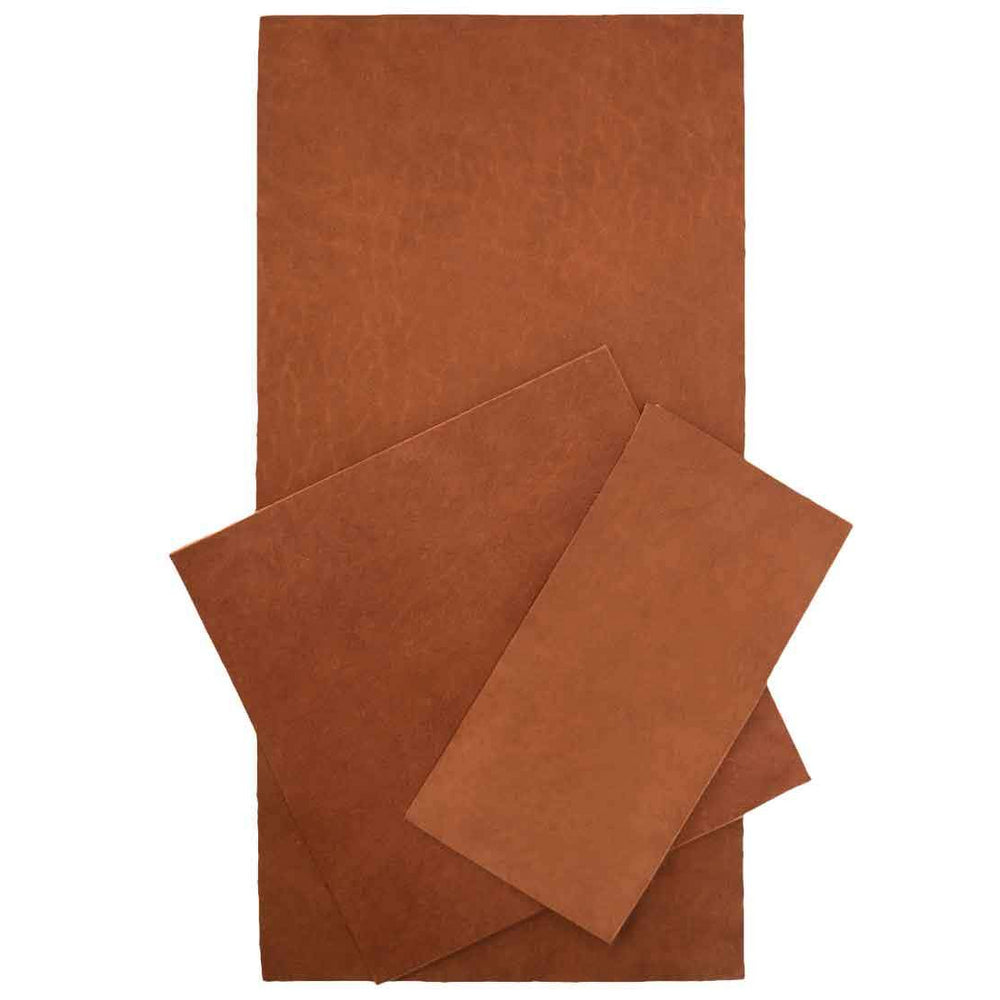 Leather Squared Scraps 6 in. Variety (3 Pack)