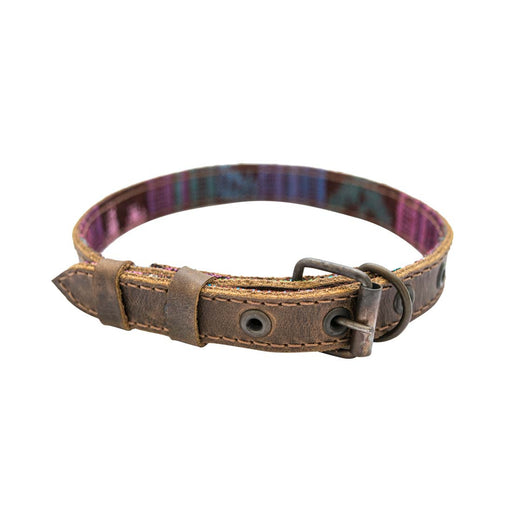 Dog Collar With Mayan Lining