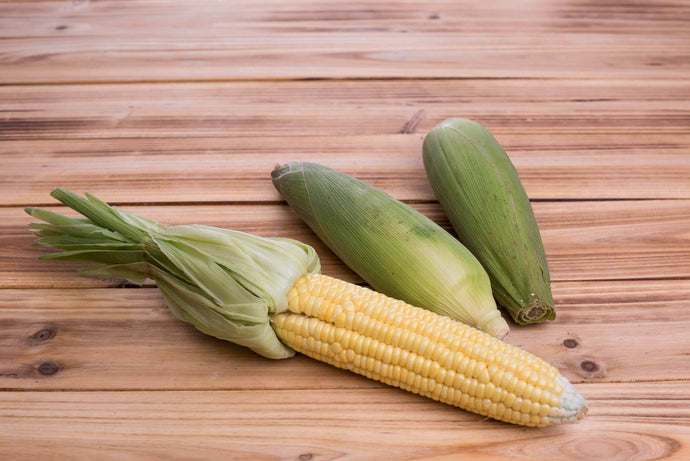 Yellow Sweet Corn - 香甜玉米 (selection)