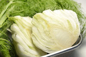 Fennel - 茴香 (selection)