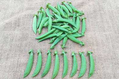 Sugar Snap Peas - 甜豆 (150g)