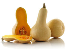 Mini Butternut Squash - 迷你牛油南瓜 (450-600g)
