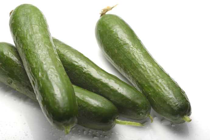 Western Cucumber - 青瓜仔 (300g+)(selection)