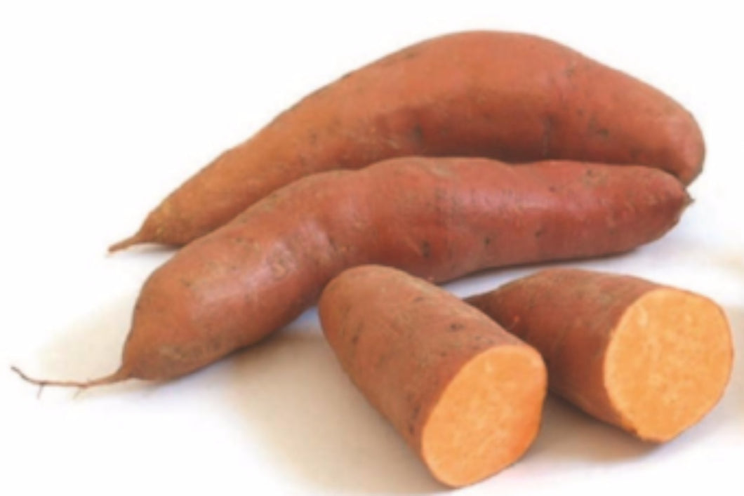 Orange Sweet Potato - 黃肉蕃薯 (300g)