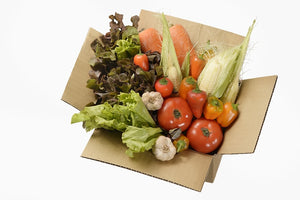 10 Veggie Box Package