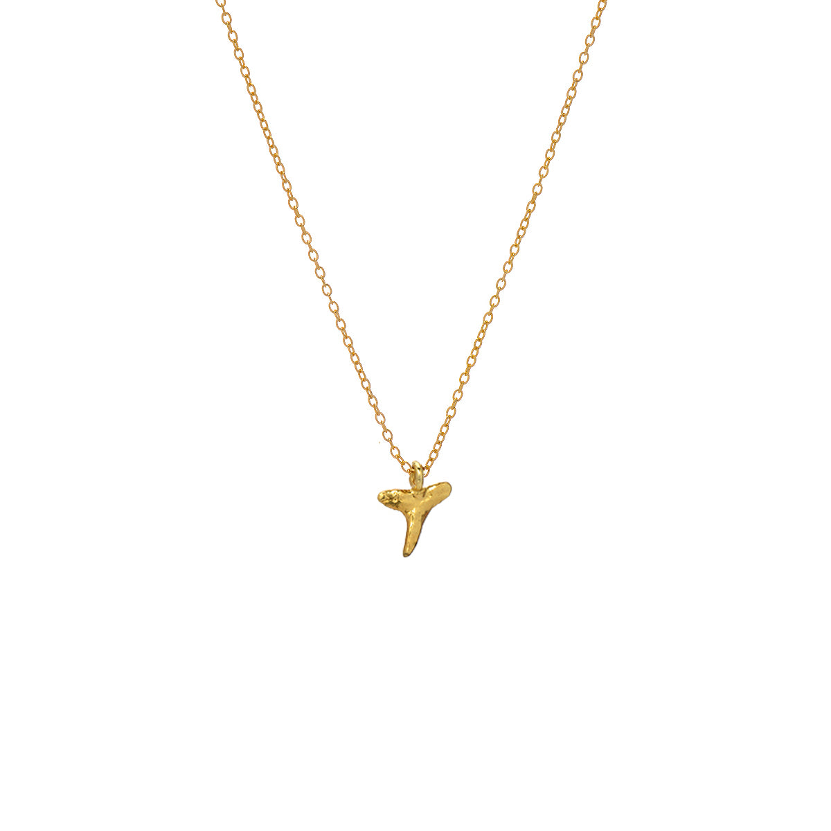 Reef Shark Necklace