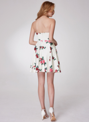 Sexy Women's Floral Print Strapless Dress