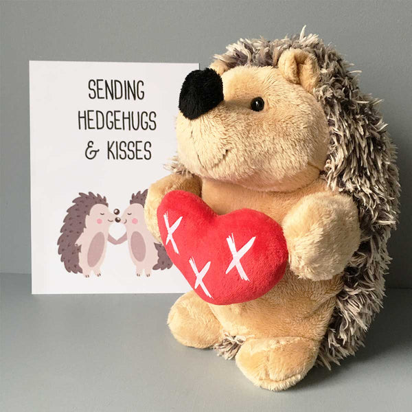 Sending Hedgehugs & Kisses Soft Toy