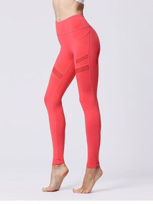 Katia Yoga Pants (More Colors)