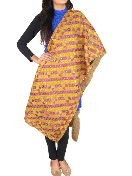 Bagh Phulkari Stole in Multicolor - CPPST23JN5