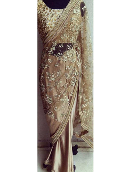 Designer Saree With Heavy Border In Light Brown - AE-PDS30AG19