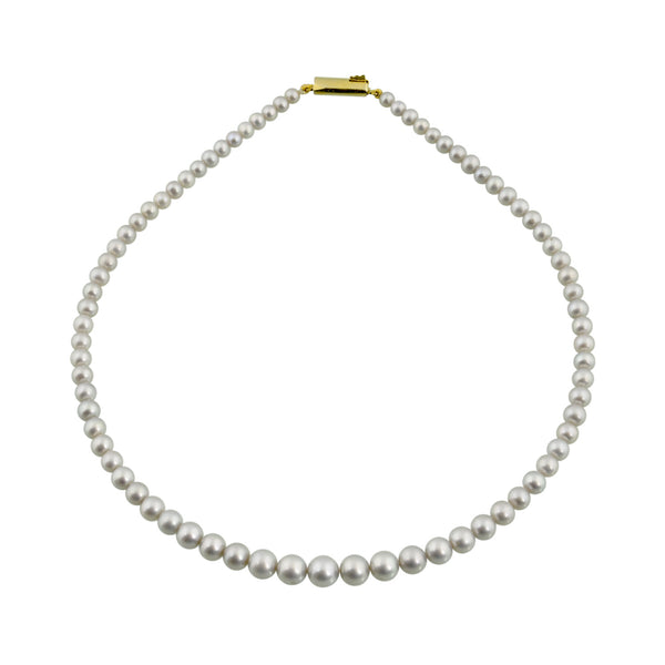 Pearls String - CHTN25AG127