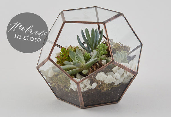 Talking terrariums - Why we love these miniature gardens...