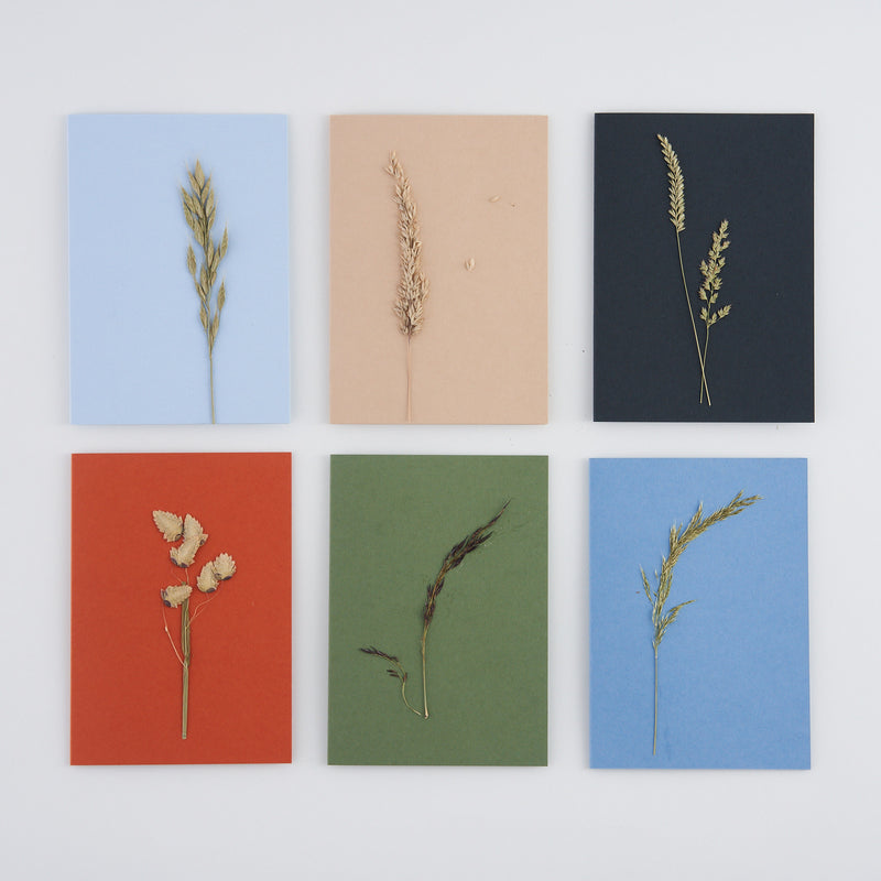 Set of 6 Pressed Grass Greetings Cards