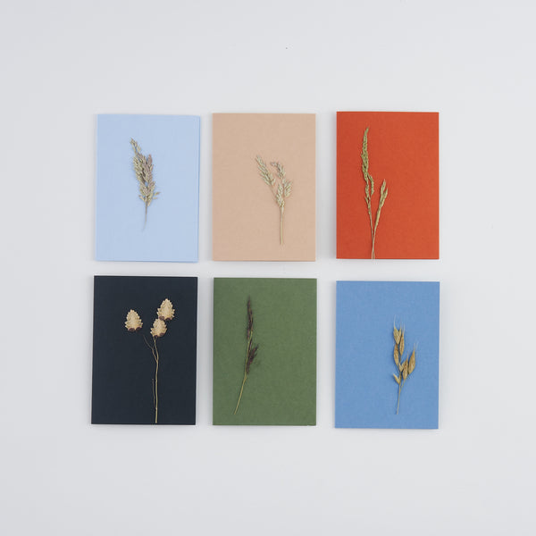 Set of 6 mini A7 pressed grass greetings cards
