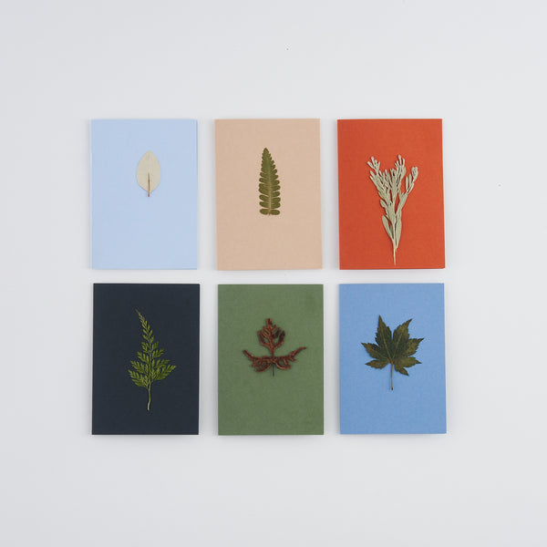 Set of 6 pressed leaf greetings cards