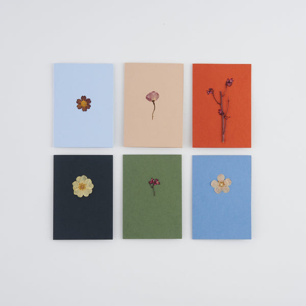 Set of 6 mini A7 pressed flower greetings cards