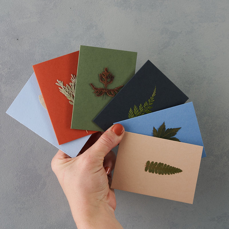 Set of 6 mini A7 pressed leaf greetings cards