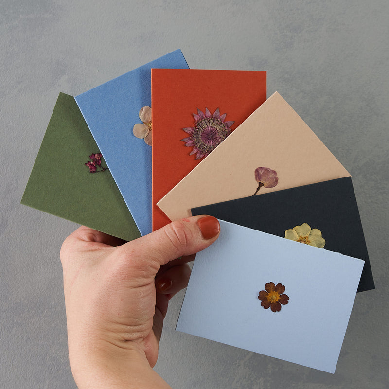 Set of 6 Pressed flower greetings cards