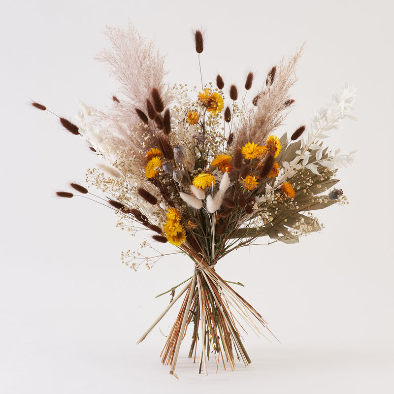 Dried Flower Bunch Golden Hour