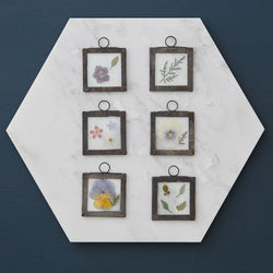 Small Square Pressed Flower Glass Frame by Botanique Workshop