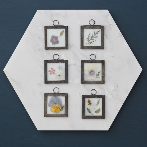 Pressed Flower Glass Frame Picture – Small Square (9 options available)