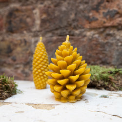 Fir Cone Bees Wax Candles Set