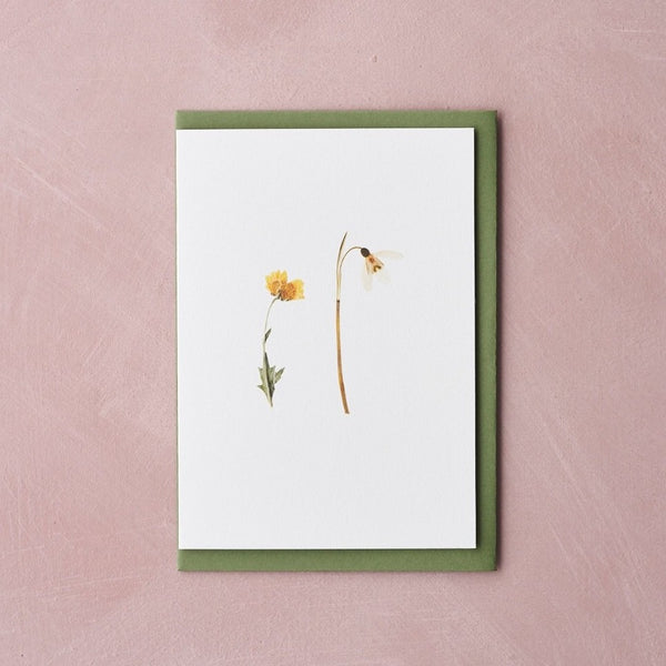 Pressed Flower Botanical Greetings Card - Spring