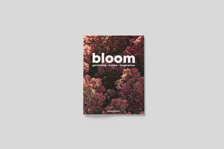 Bloom Magazine Issue 7: Autumn 2020