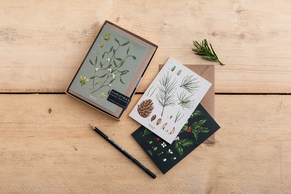 Box of 8 Botanical Luxury Christmas Cards - 'Species' Collection