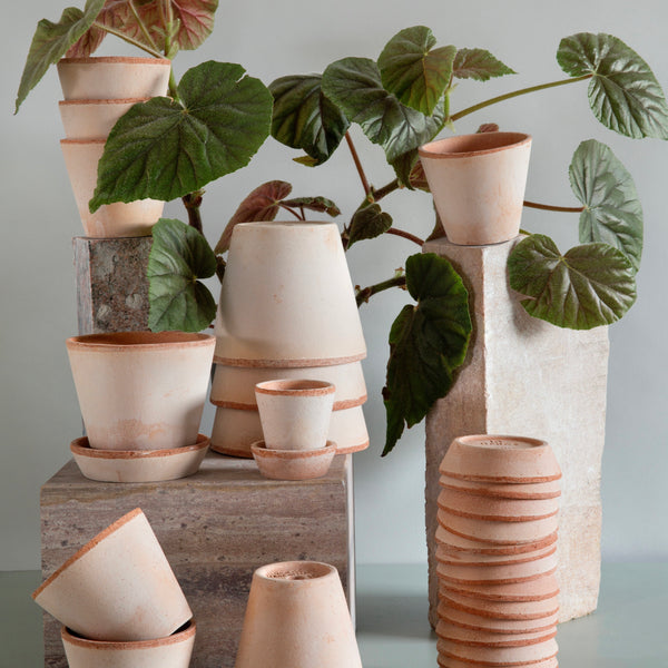 Bergs Terracotta Julie Pot 17cm
