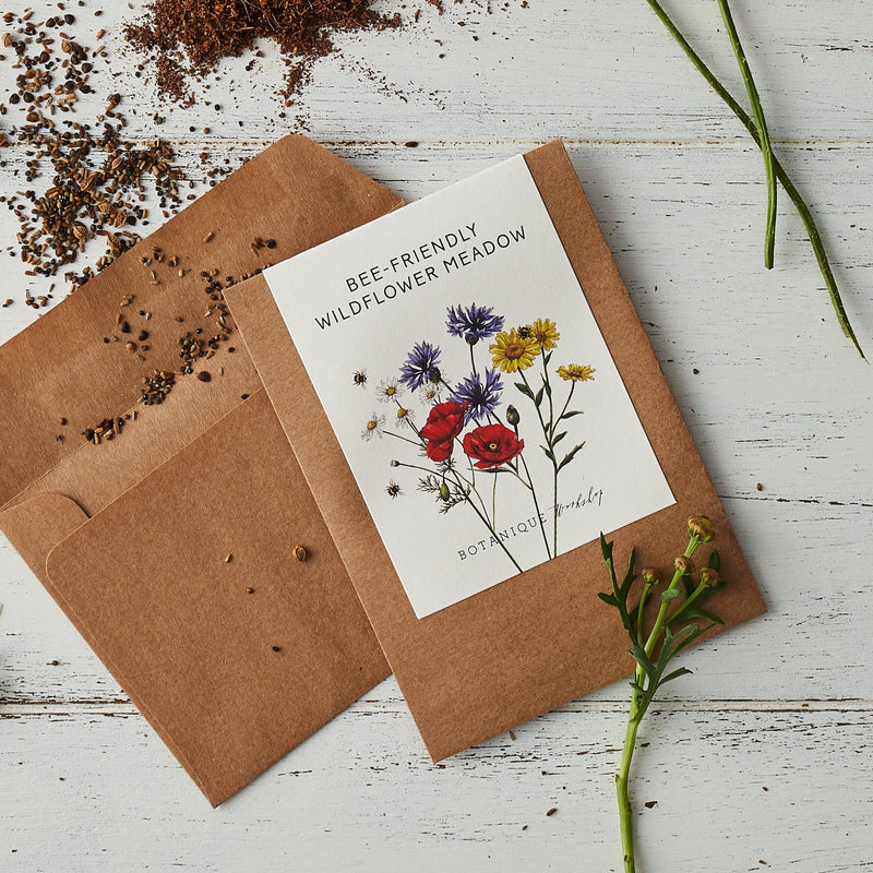 Garden Seeds - Sweet Peas, Sunflower, Poppy and Wildflower Meadow