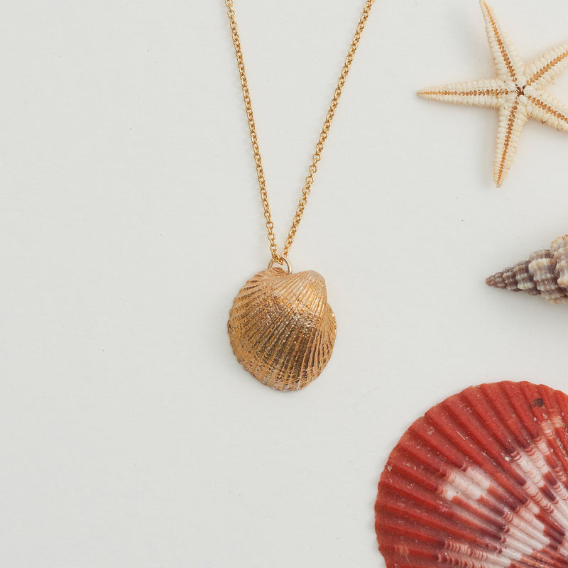 Hand Cast Shell Necklace | Cockle