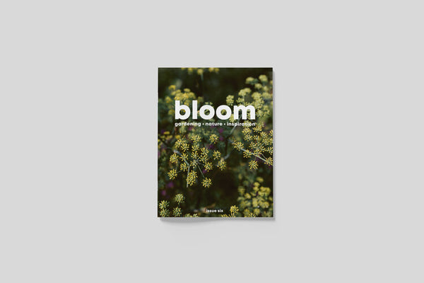 Bloom Magazine Issue 6: Summer 2020
