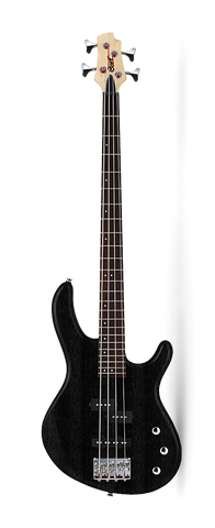 Cort Action PJ Bass