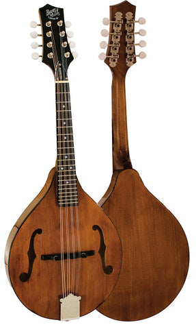 Barnes and Mullins Mandolin - Wimborne Model Electro