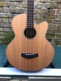 Tanglewood Evolution IV TAB 1 CE Acoustic Bass with Fishman pickup