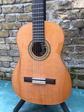 Giannini GWNC4 X Brazilian All Solid Asturias Classical Guitar Special Edition