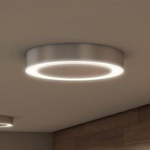 "Talitha 16"" Modern Halo LED Ceiling Fixture, Satin Nickel"