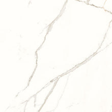Panaria Wall and Floor Tiles Trilogy Calacatta White
