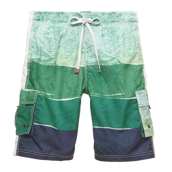 Panoramic Atmosphere Swim Shorts