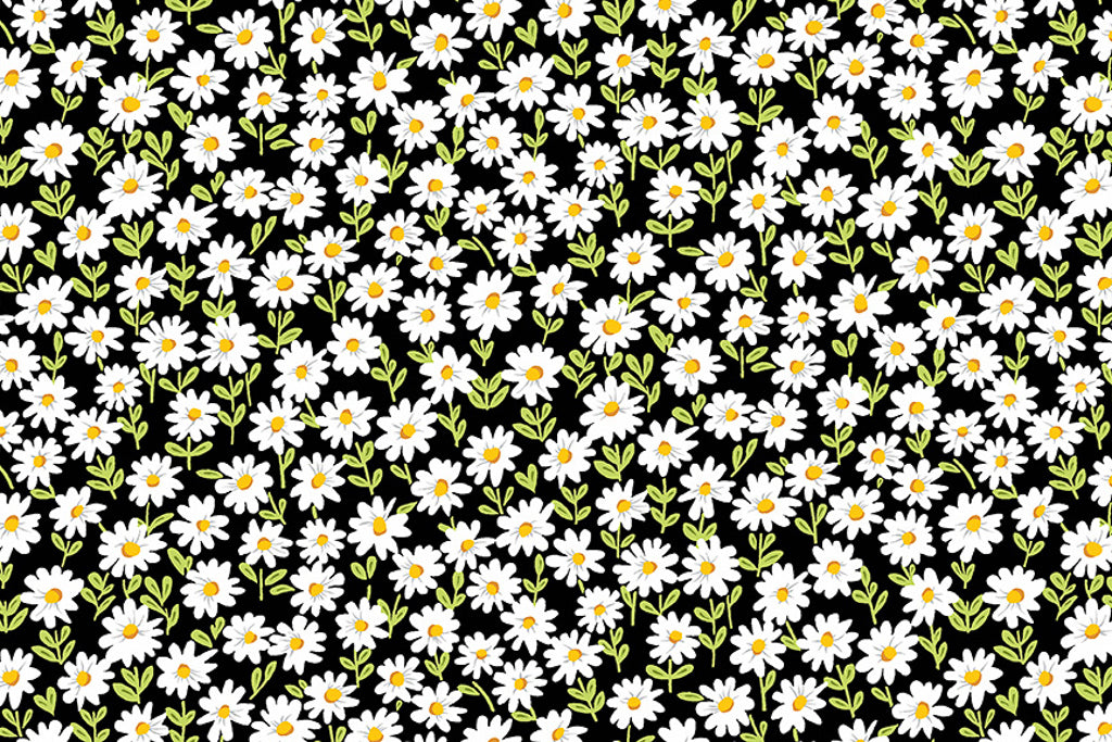 Daisies Fabric - Black. Small White Daisies on a Black Background. From the Sunny Bee Collection by Makower.