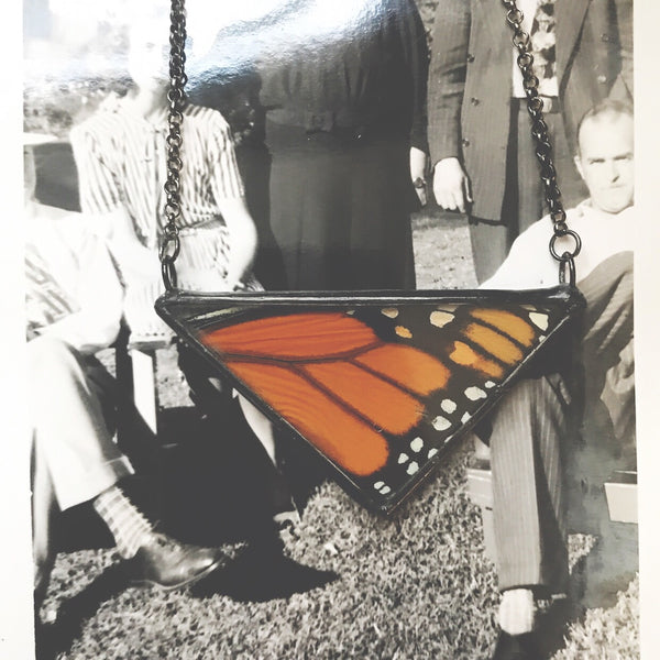 Large Monarch Triangle
