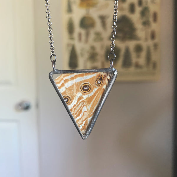 Mother of Pearl Morpho Triangle